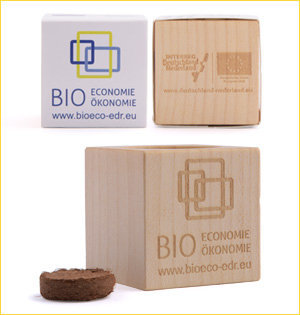 promotionele artikelen - voorbeeld: Eems Dollard regio houten plantenbakje