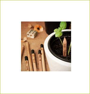 Sprout potlood sfeerbeeld